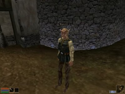 Скриншоты из The Elder Scrolls III: Morrowind